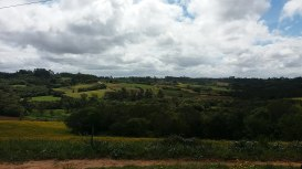 Pampa_gaúcho