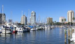 st Petersburg_Florida_from_Marina